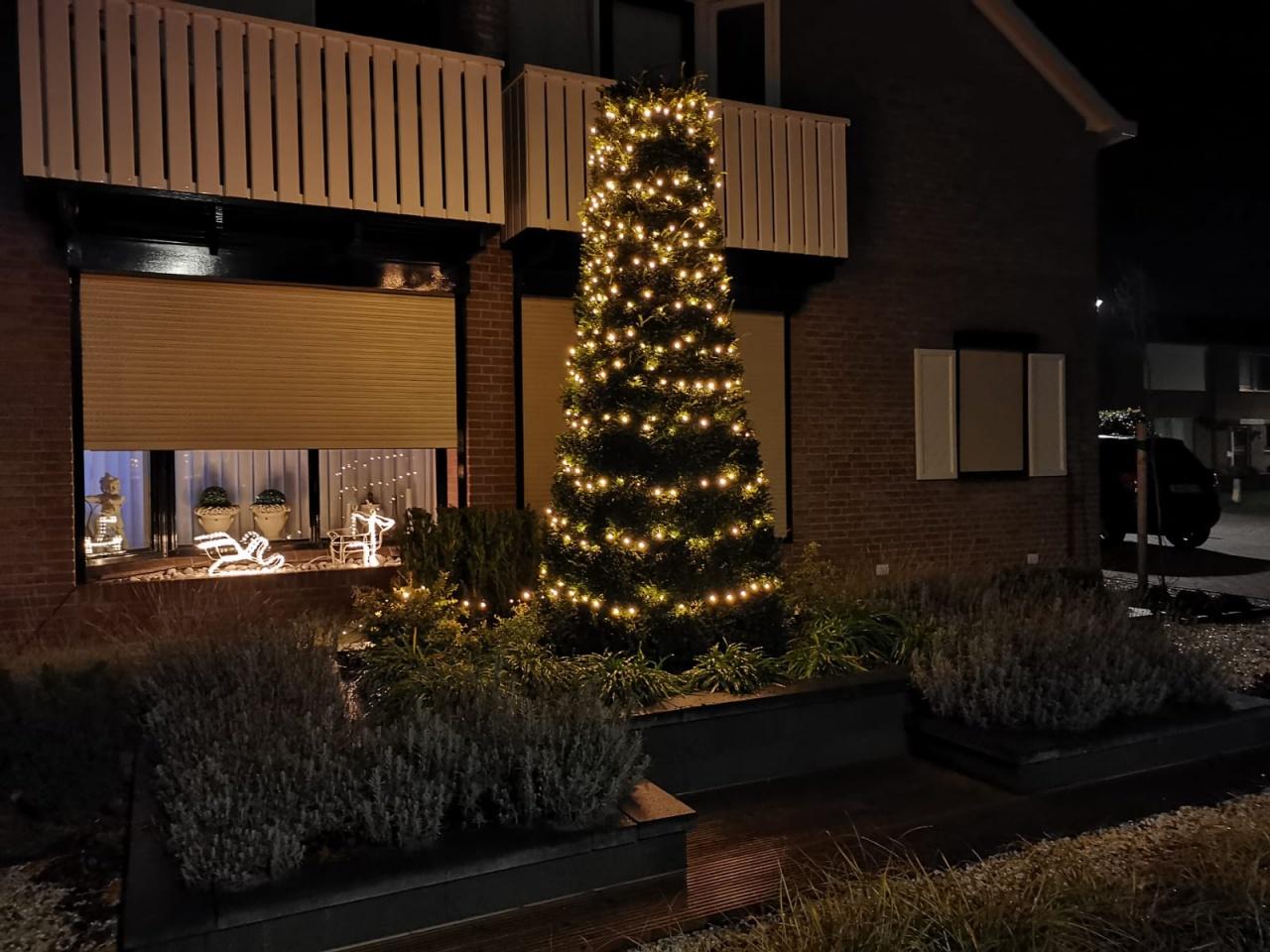 Naam: Kerstboom buiten.jpg Bekeken: 249 Grootte: 341,3 KB
